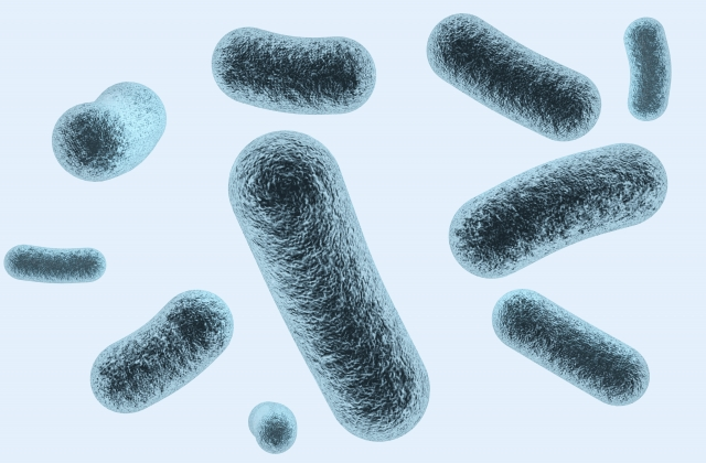 新型コロナウィルス感染の疑いのある方 まずは平塚保健福祉事務所に連絡を!